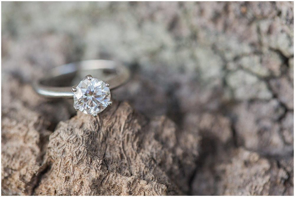 Gorgeous Ring Shot on tree branch