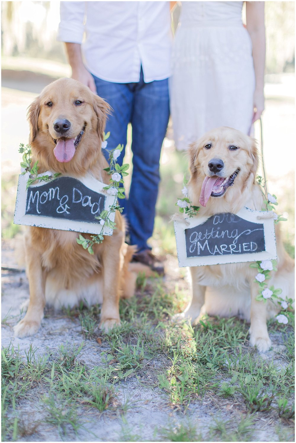 Mom and Dad are Getting Married Puppy Engagement Session