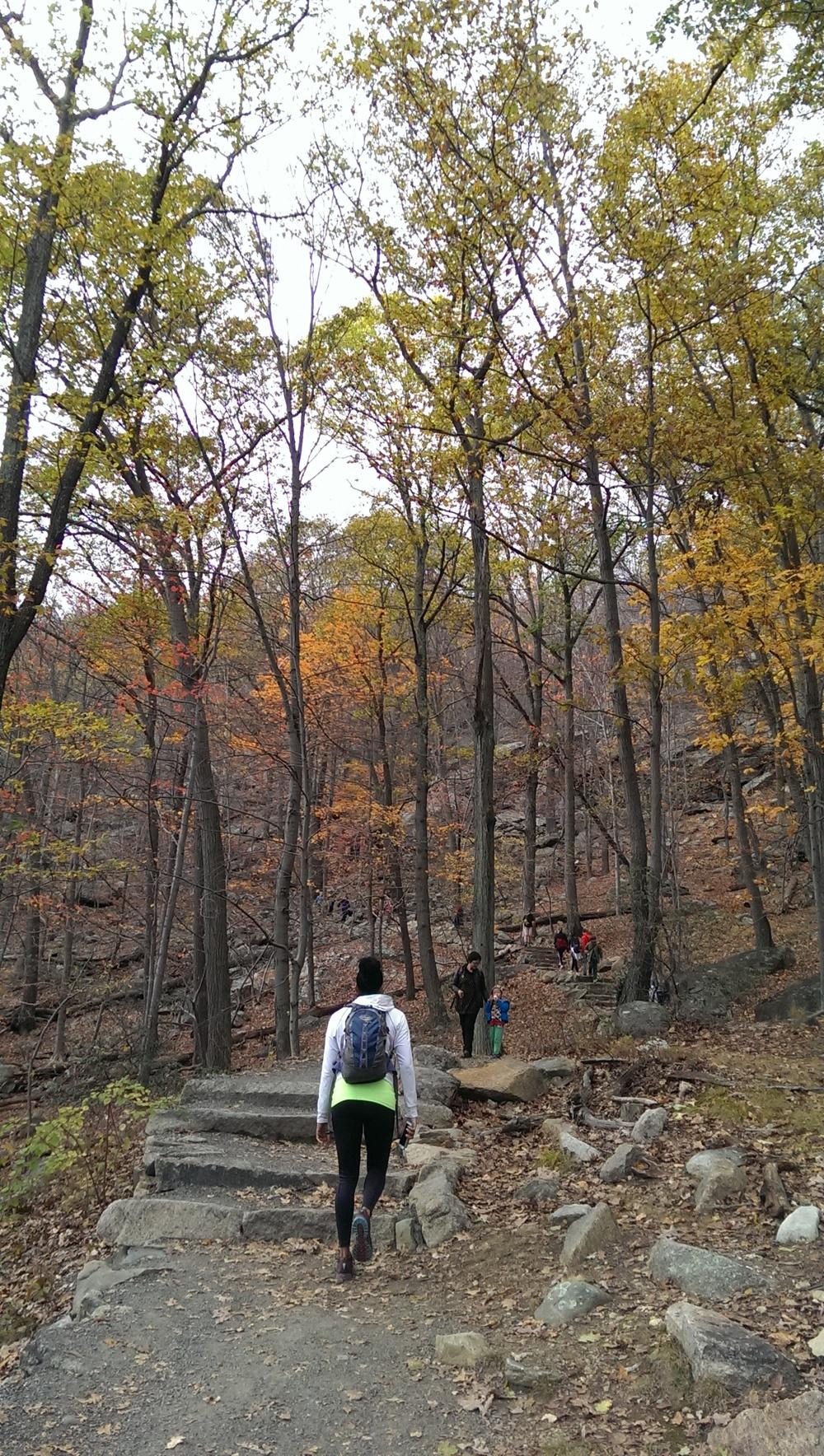 stone trail.