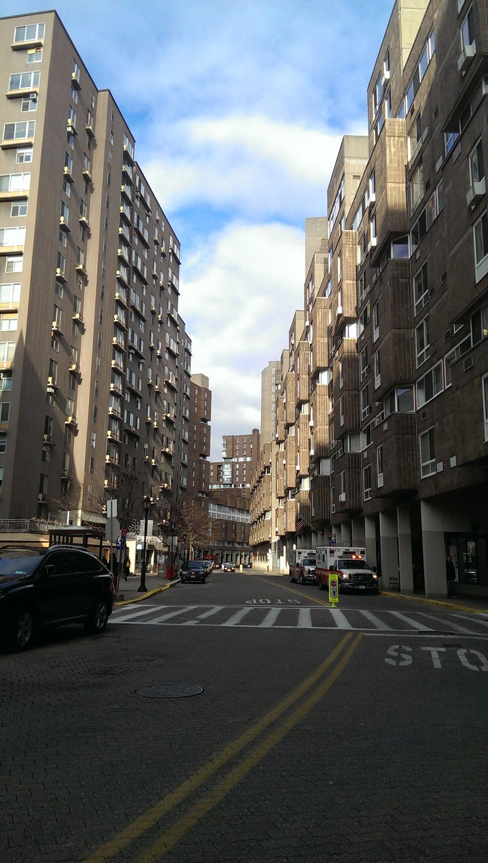 barren Roosevelt island street.