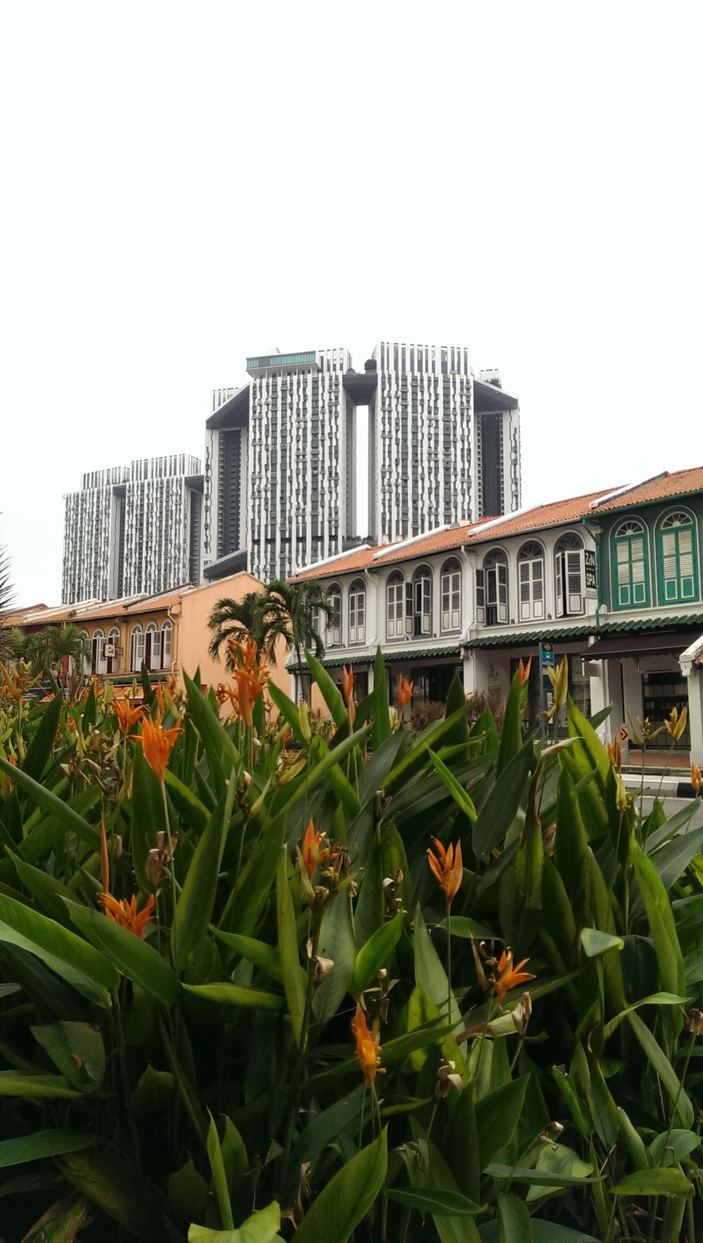 Singapore - tropic, old and skyscrapers.