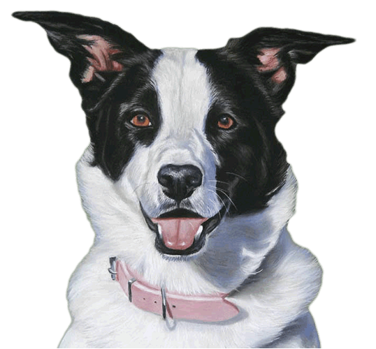 dog-1.png