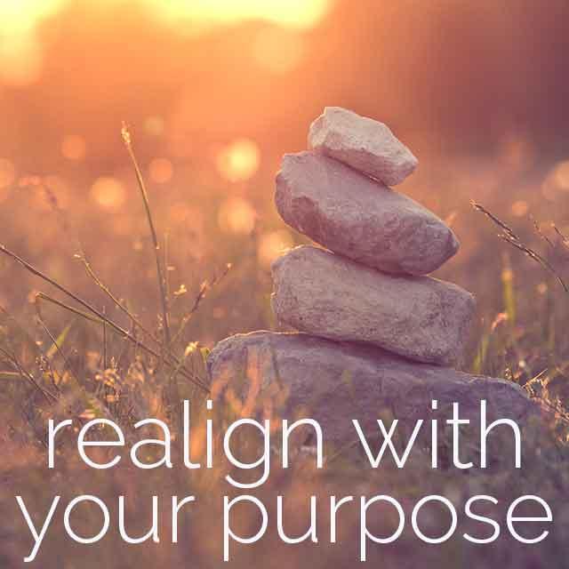 Realignpurpose.png