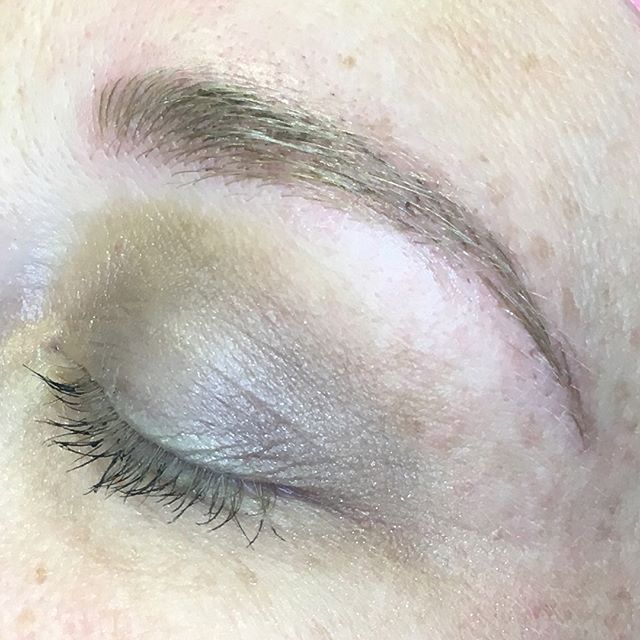 Touch-up, healed after first session, before procedure. Beautiful natural looking light blonde brows that don't disappear.