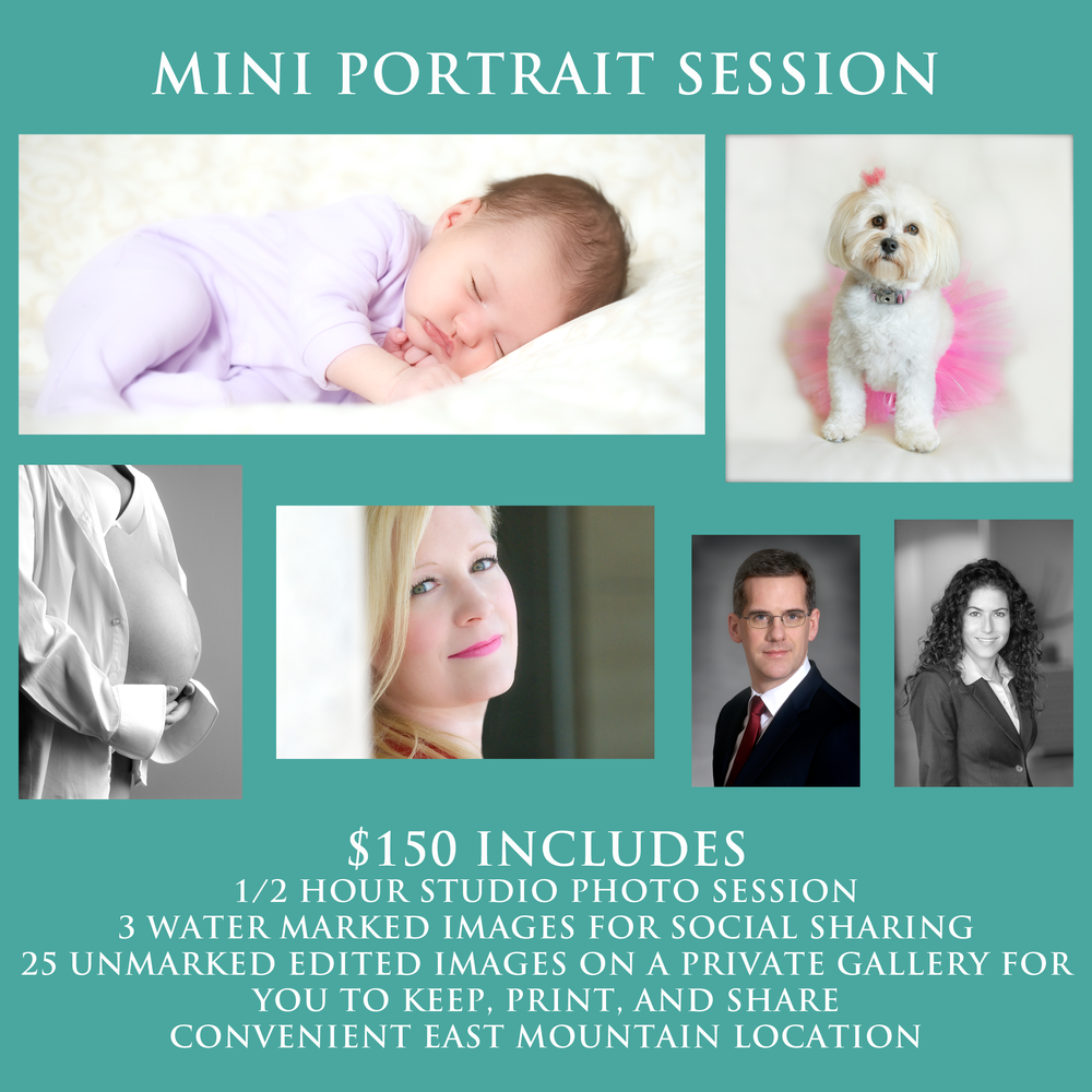 mini portrait session.png
