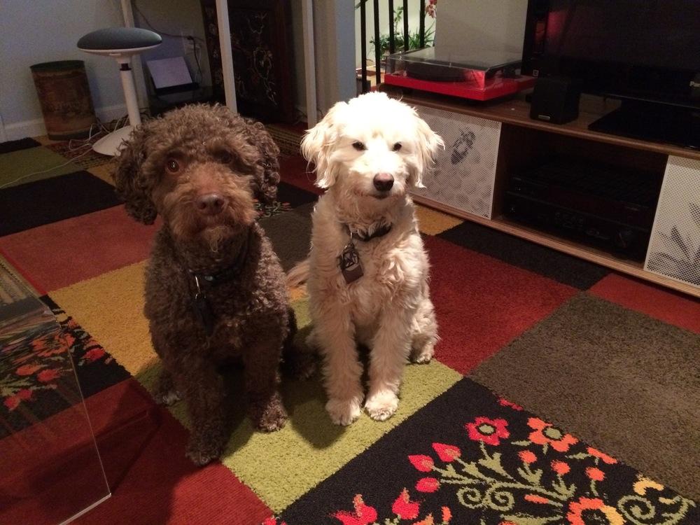 Winston & Izzy