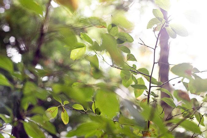 oct2012_MG_0606-2.jpg
