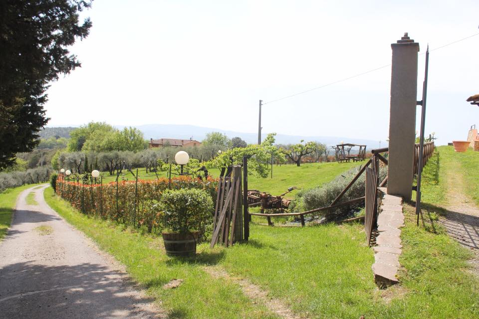 Sant Appiano farm & vineyard in Chianti
