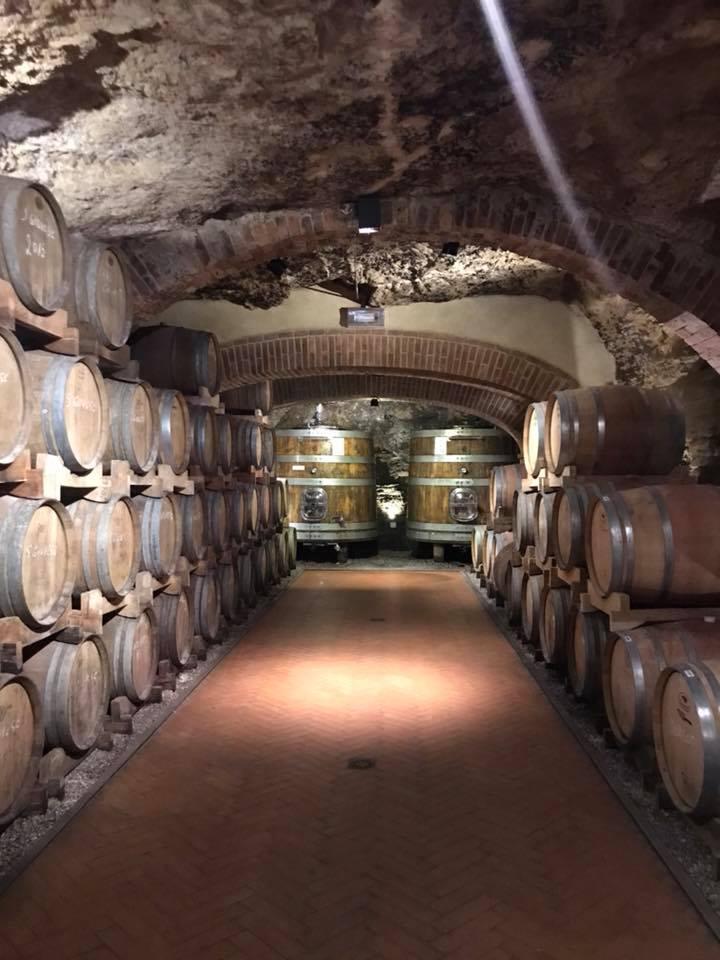 Sant Appiano wine cellar