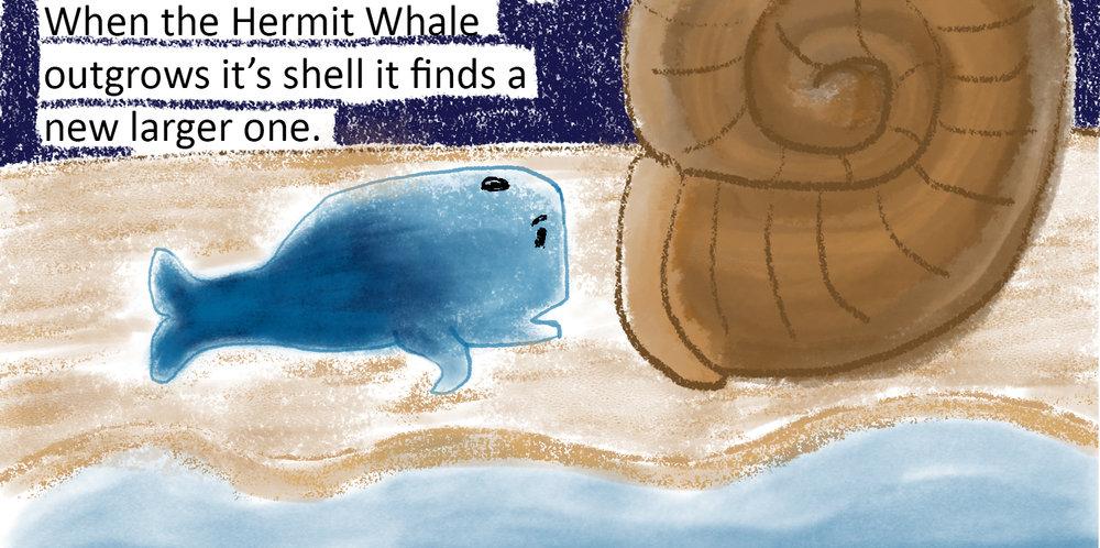 12 - Hermit Whale