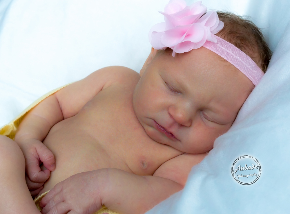 newborn baby girl photographer eau claire wi aubade photography