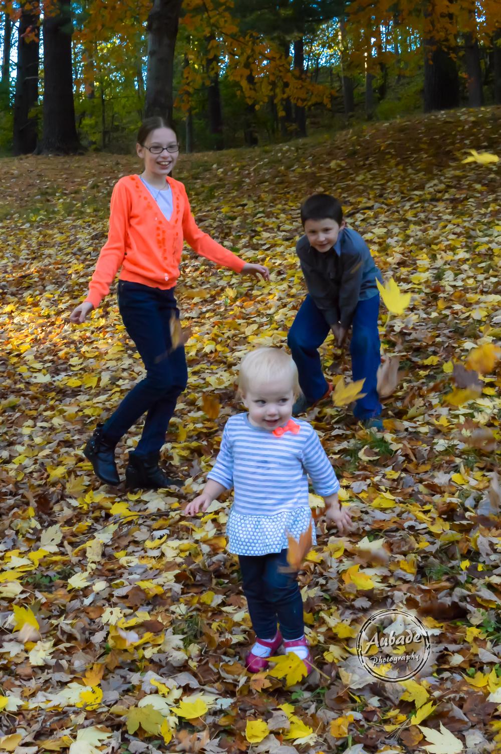 #Aubade Photography #Eau Claire photographer #Family Photography #Fall photos #leaf fight