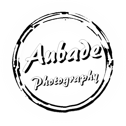 Eau Claire Photographer - Aubade Photography