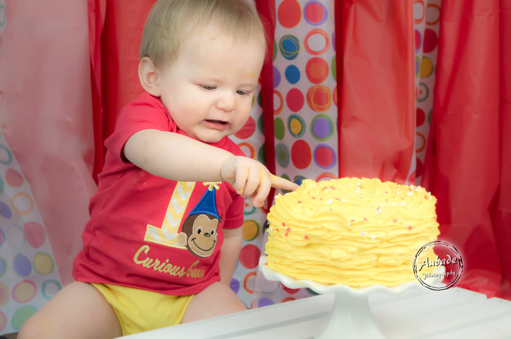 Gavin's First Birthday