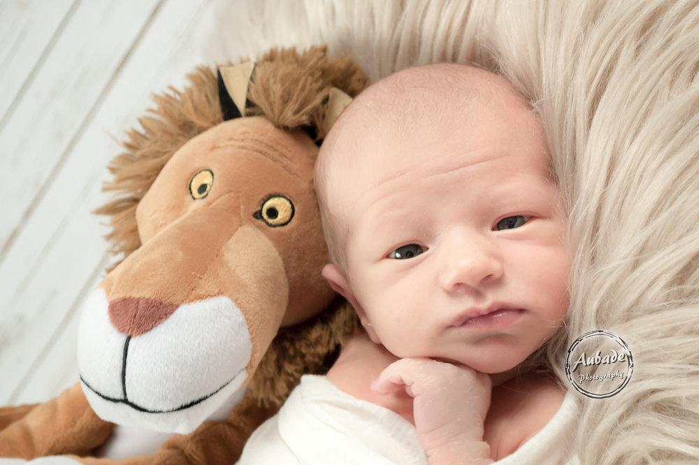 Kanarowski newborn
