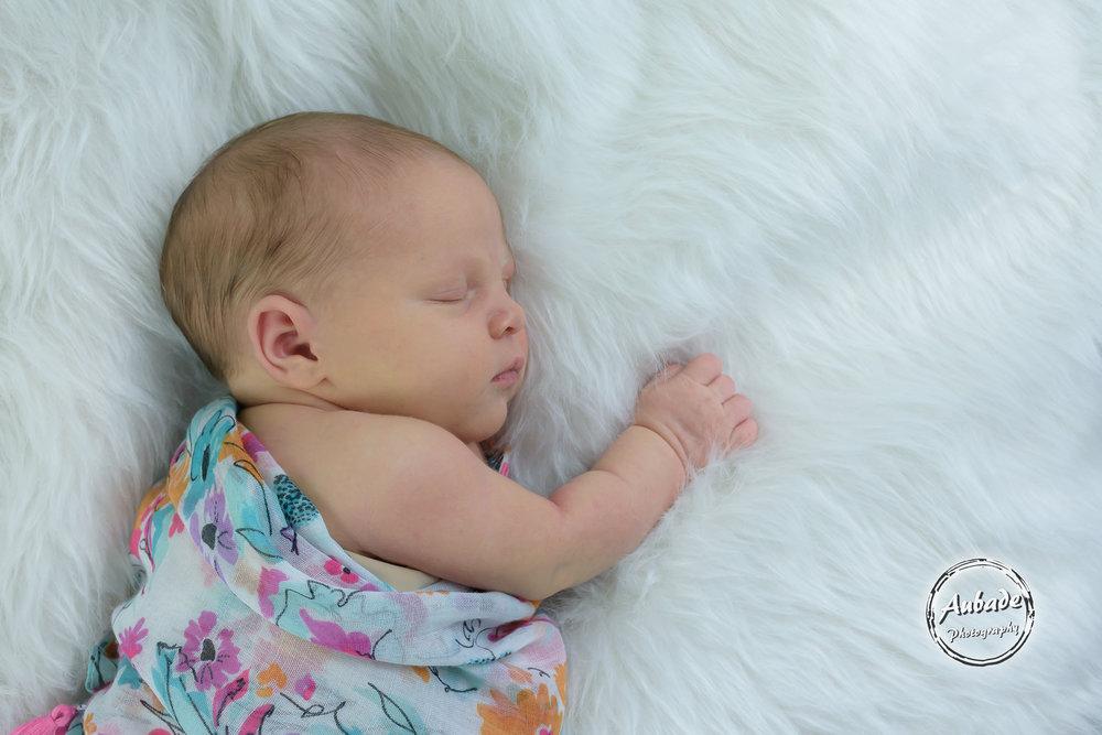Freya newborn