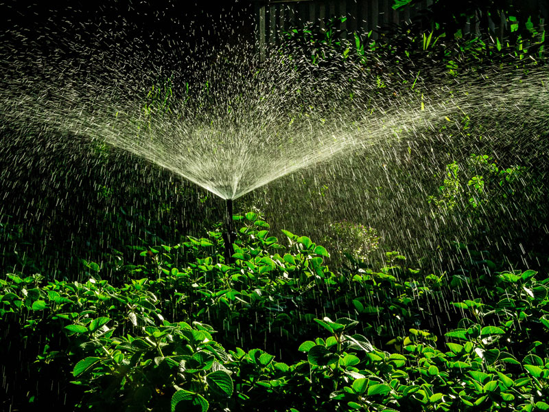 Tune up your irrigation system to help conserve water.  Via Thangaraj Kumaravel - Flickr.