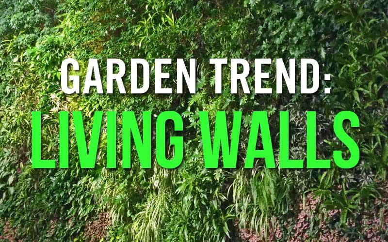 garden trend: living walls