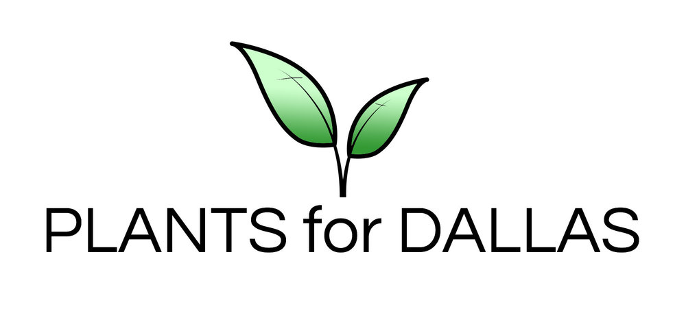 Plants for Dallas - Your Source for the Best Landscape Plant Information for the Dallas-Ft. Worth Metroplex