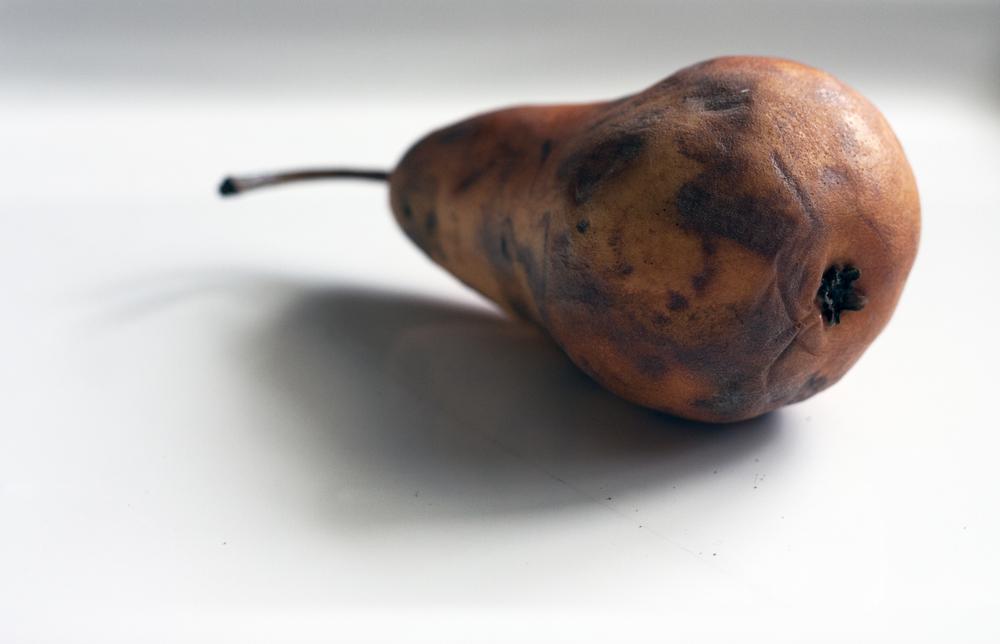 Still Pear 5.jpg
