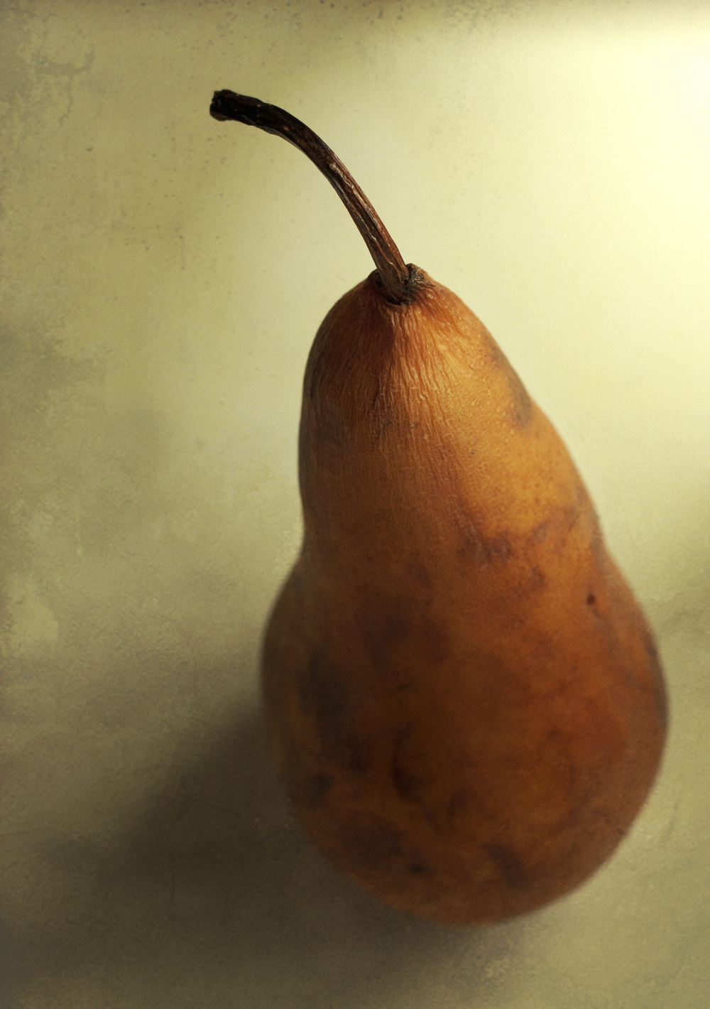 No. 4 Dying Pear