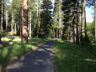 Run_Lake_Tahoe.jpg