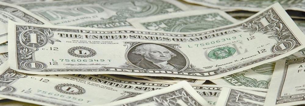 dollars-hed-2013.jpg