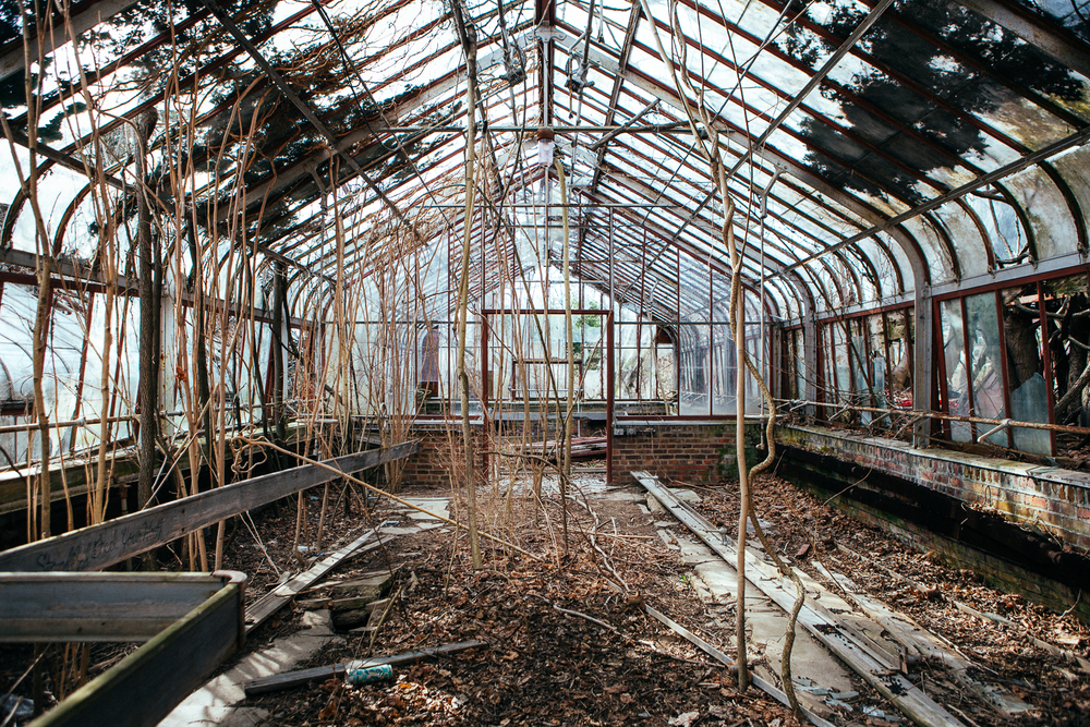 "The abandoned greenhouses are still ""kinda"" working."