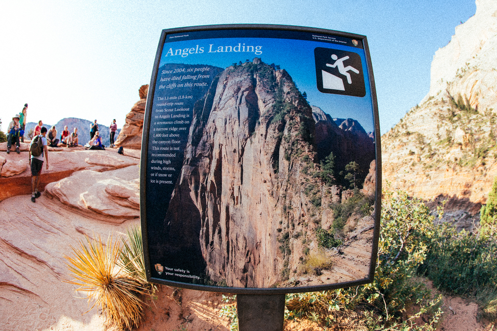 The next day I got up super early for a hike up Angels Landing to avoid the heat and other tourists. This thing is serious!