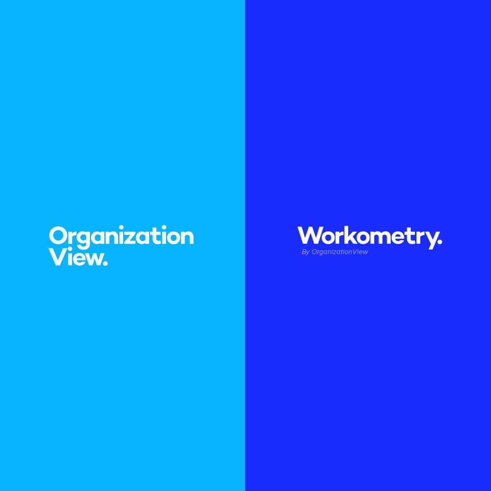 Case study - OrganizationView & Workometry rebrand