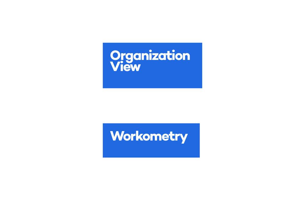 Organization_View_Logo_Development6.jpg