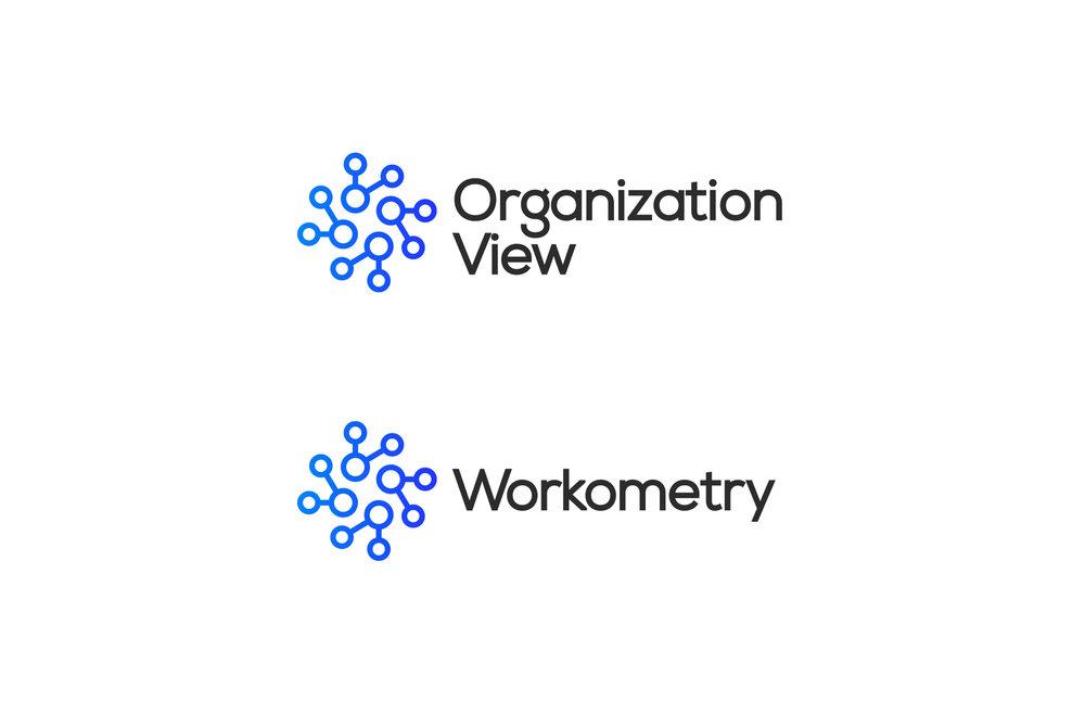Organization_View_Logo_Development7.jpg