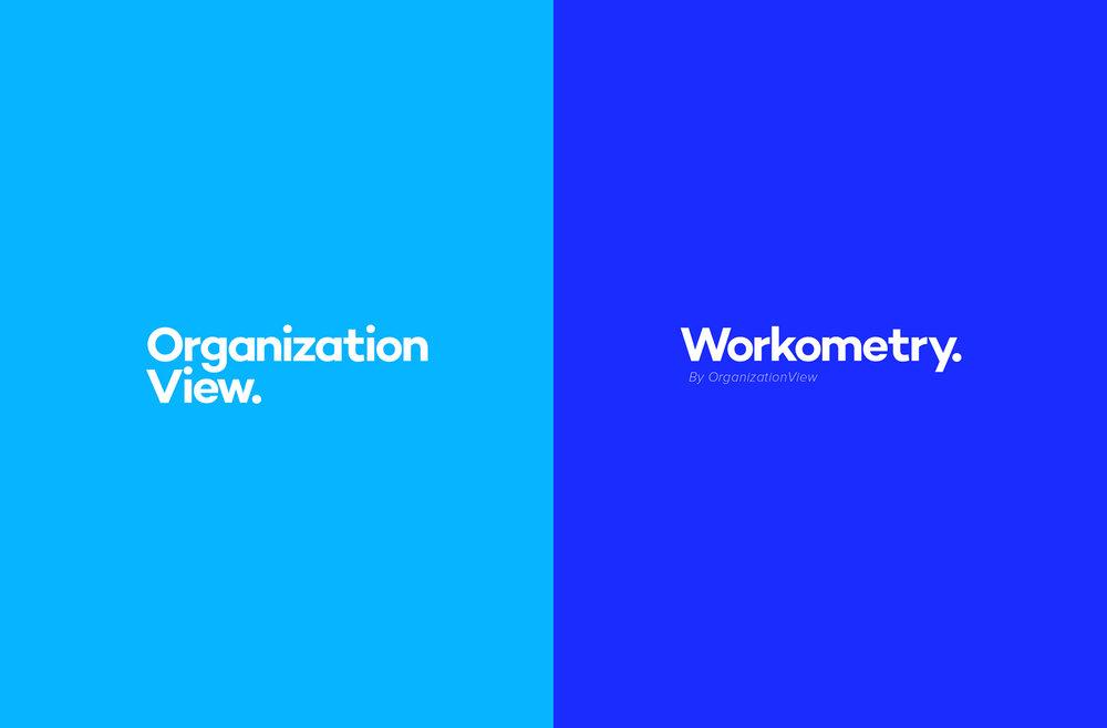 Organization_View_Logo_Development13.jpg