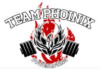 team phoenix.png