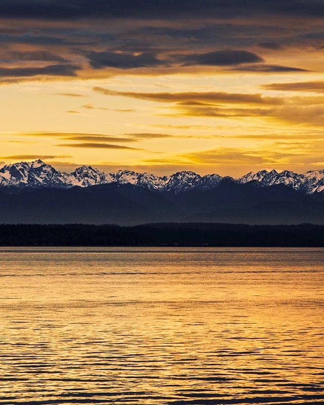 Lovely view from Golden Gardens Park . . . . . . . . #seattle #seattlelife #seattlephotographer #olympicmountains #sunset_sunrise_beautiful #westernnature #seattleart #pnw #sunset #nikonusa #washingtonexplored #pnwescapes #landscapephotography #landscape_lovers #landscape_captures #landscapecaptures #landscapephoto #visitseattle #clouds #sky_sea_sunset #livewashington #viewpnw #fs_sunset #sunsetlovers