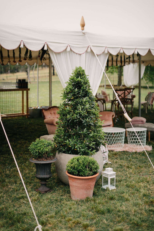 101_hunter_valley_wedding_photography_redleaf_paul_bamford_finchandoak.jpg