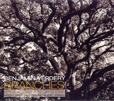 2006 BV-Branches.jpg
