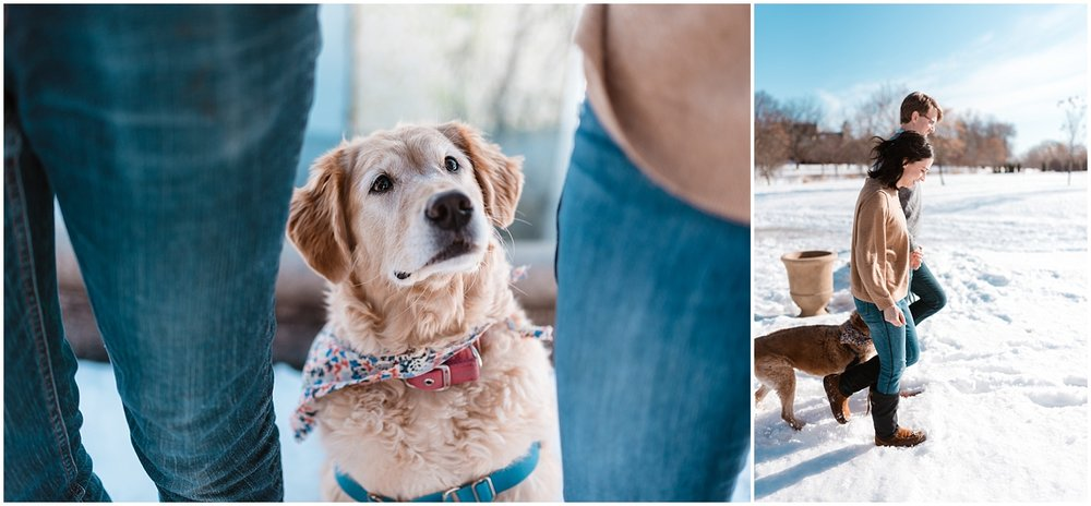 Lakey Harriet Engagement photography  Lakey Harriet Engagement photographer  Minneapolis Engagement Photographer Minneapolis Engagement Photography Lake Harriet Rose Garden Photography  Lake Harriet Rose Garden Engagement Photography  Dog with engagement Photography
