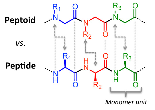 Figure 1. Comparison of peptoid and peptide chemical structures.