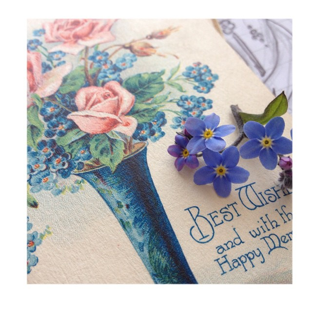 Forget me nots and vintage cards on my desk today    #british #wildflowers #design #inspiration #beauty #spring #flowers