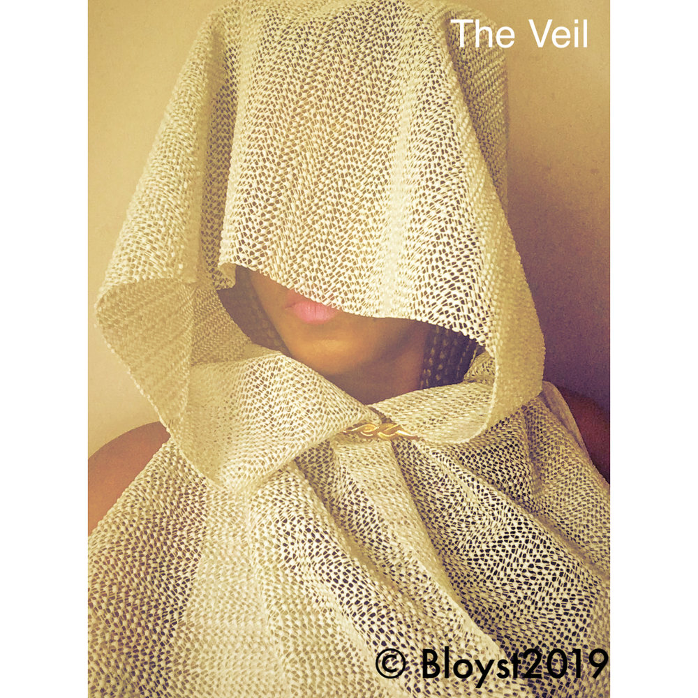 The Veil is a miniature collection of contemporary photography by Bloyst on show later on this year