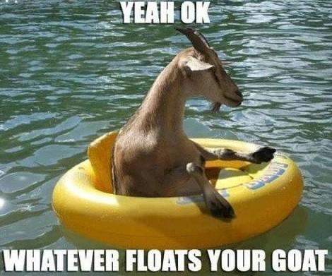 goat1864.jpg