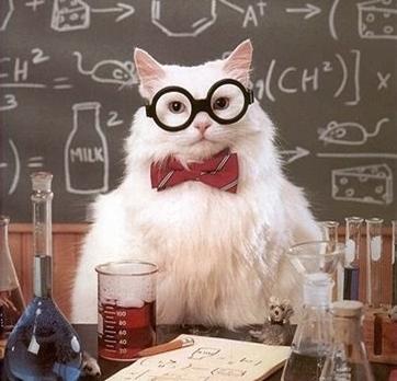 sciencecat1864.jpg
