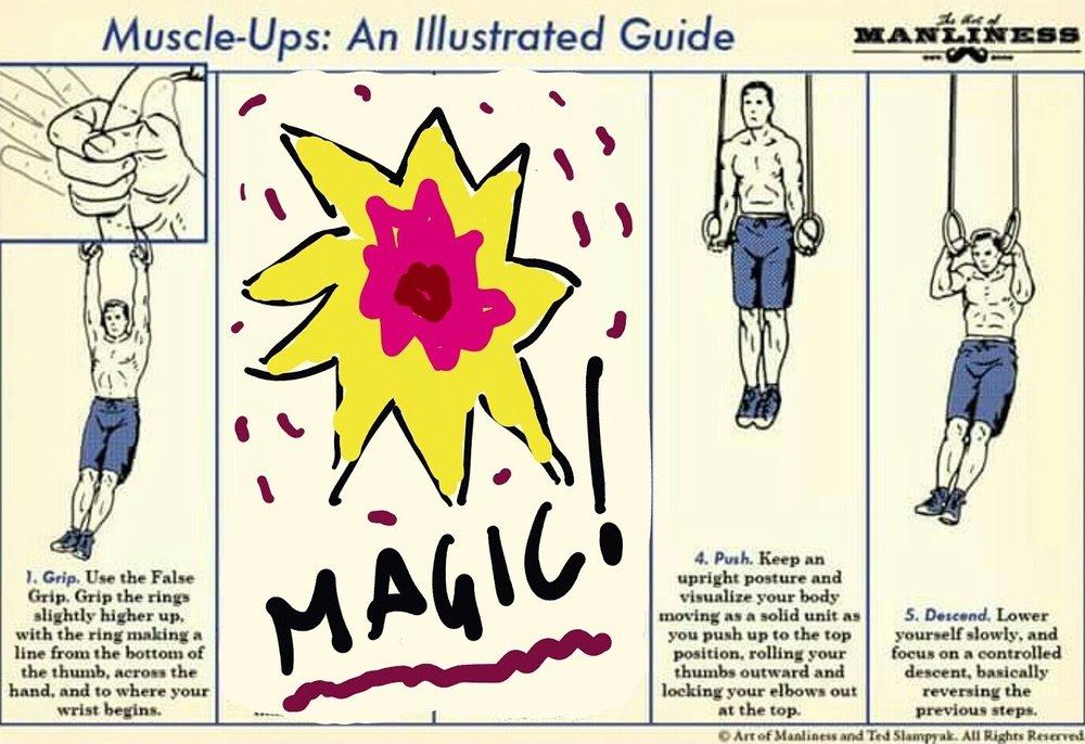muscleups1864.jpg