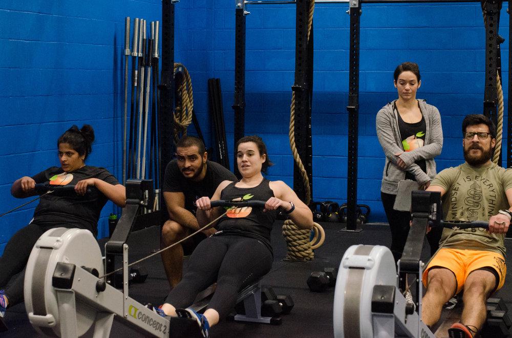 rowing1864.jpg