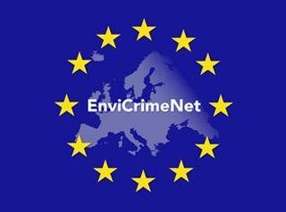 9 envi crime net.jpg