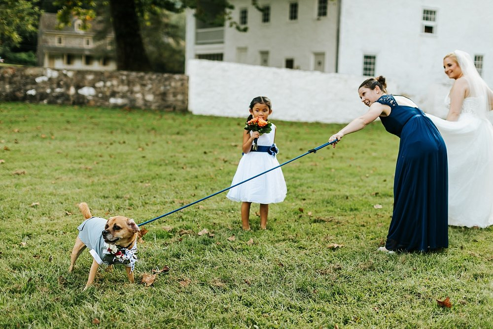 Wedding party at valley forge park
