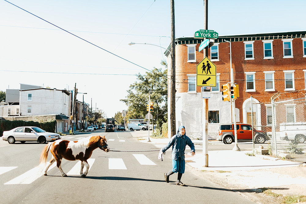 A horse getting walked across the street in fishtown, philadelphia