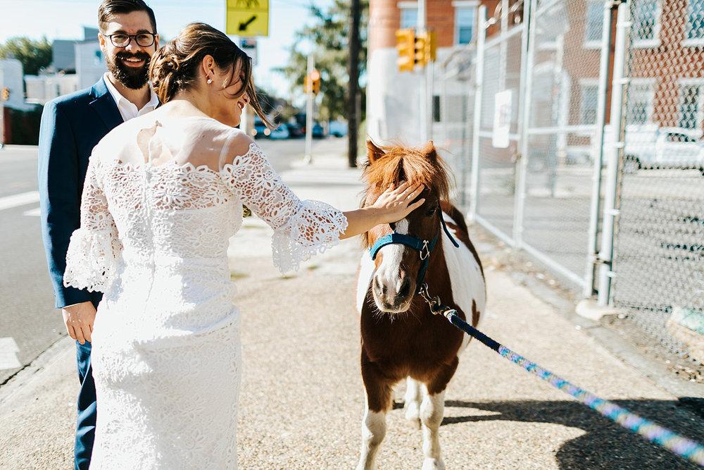 Bride pets horse in fishtown, philadelphia