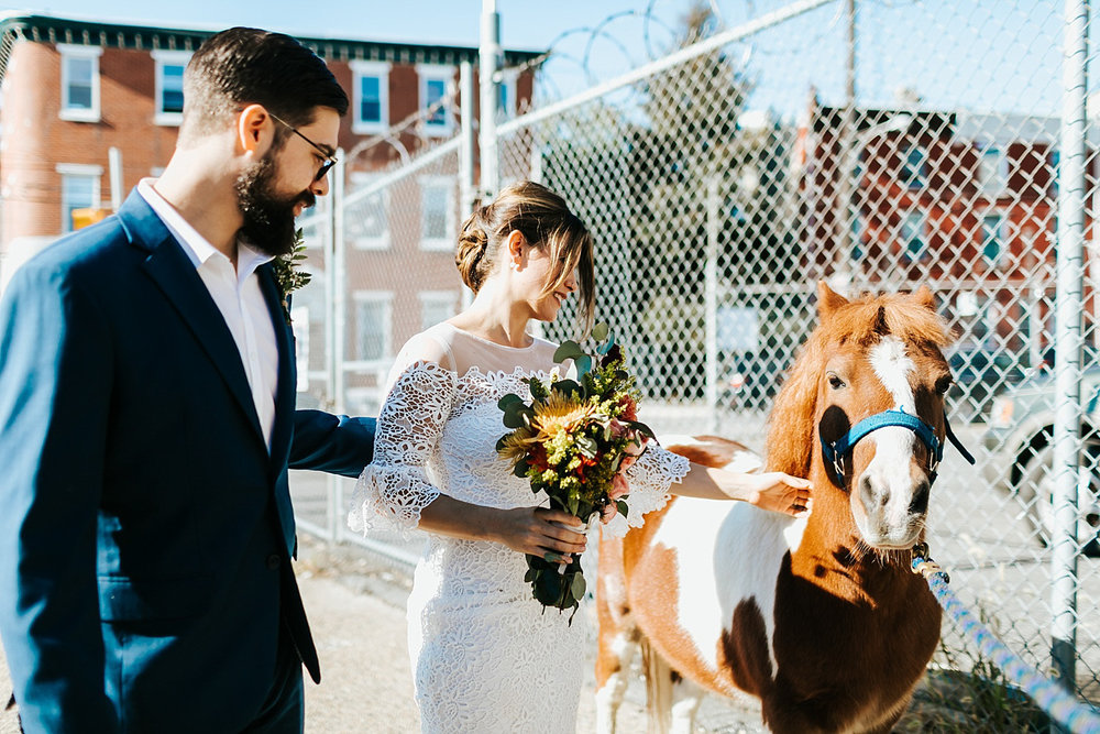 Bride and groom hanging with a horse in fishtown, philadelphia